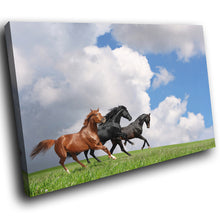 A297 Framed Canvas Print Colourful Modern Animal Wall Art -  Three Stallions Galloping Cloud - WhatsOnYourWall