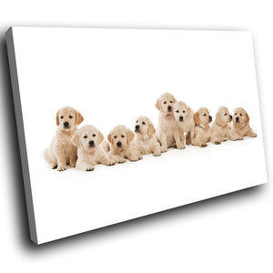 A299 Framed Canvas Print Colourful Modern Animal Wall Art - Large Litter Adorable Puppies-Canvas Print-WhatsOnYourWall
