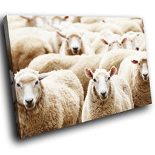 A300 Framed Canvas Print Colourful Modern Animal Wall Art -  Farm Animal Herd Wooly Sheep - WhatsOnYourWall