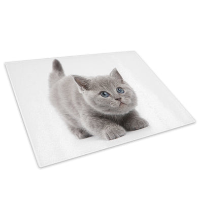 Grey Kitten Cat Blue Eyes Glass Chopping Board Kitchen Worktop Saver Protector - A305-Animal Chopping Board-WhatsOnYourWall