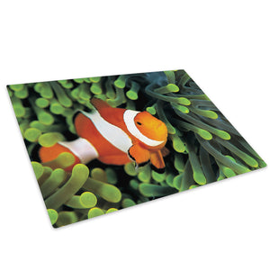 Clownfish Green Sea Coral Glass Chopping Board Kitchen Worktop Saver Protector - A308-Animal Chopping Board-WhatsOnYourWall