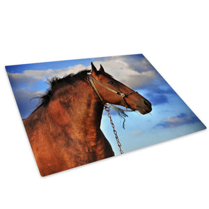 Brown Horse Blue Orange Glass Chopping Board Kitchen Worktop Saver Protector - A320-Animal Chopping Board-WhatsOnYourWall