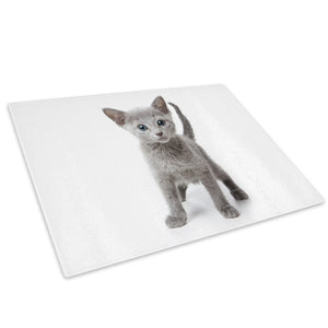 Grey Kitten Black White Glass Chopping Board Kitchen Worktop Saver Protector - A324-Animal Chopping Board-WhatsOnYourWall