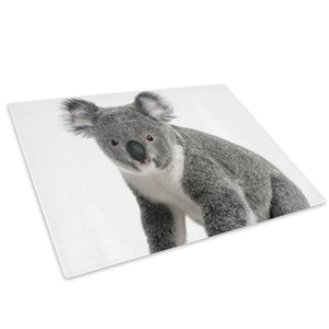 Grey Koala Bear White Glass Chopping Board Kitchen Worktop Saver Protector - A348-Animal Chopping Board-WhatsOnYourWall