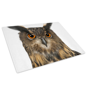 Brown Owl Orange Feather Glass Chopping Board Kitchen Worktop Saver Protector - A351-Animal Chopping Board-WhatsOnYourWall