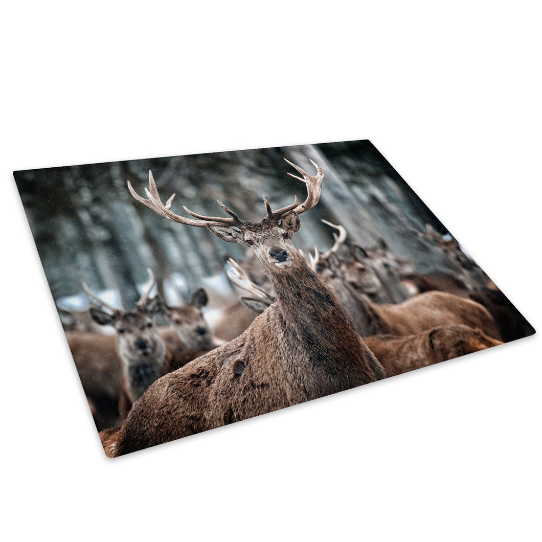 Winter Snow Forest Stag Glass Chopping Board Kitchen Worktop Saver Protector - A375-Animal Chopping Board-WhatsOnYourWall