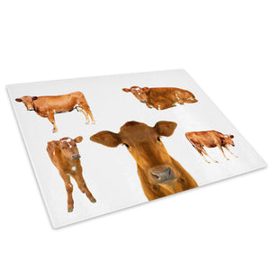 Farm Animal Cow Brown Red Glass Chopping Board Kitchen Worktop Saver Protector - A405-Animal Chopping Board-WhatsOnYourWall