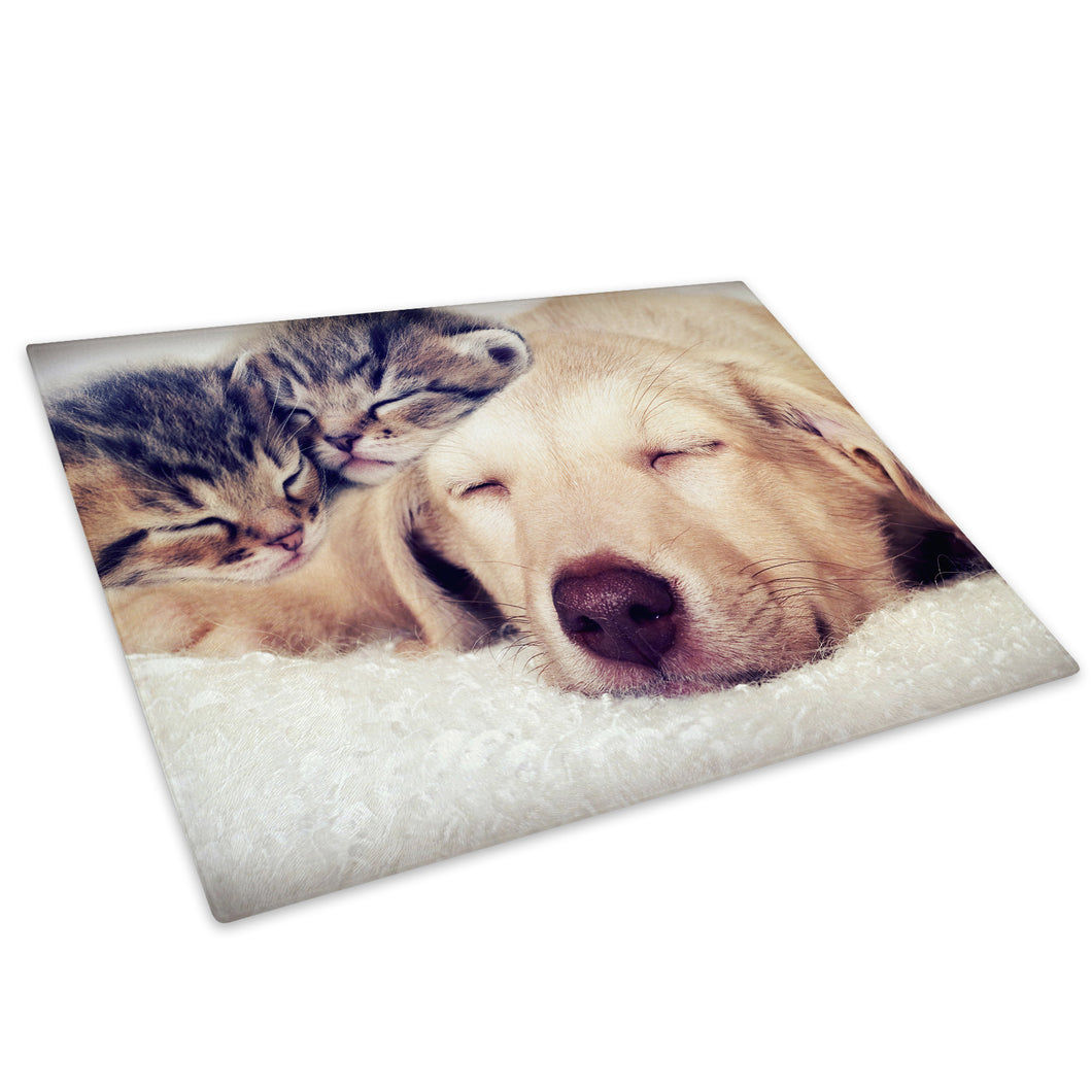 Cute Kittens Puppy Brown Glass Chopping Board Kitchen Worktop Saver Protector - A406
