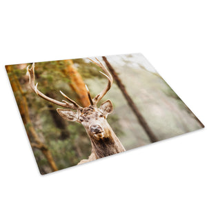 Forest Brown Stag Deer Glass Chopping Board Kitchen Worktop Saver Protector - A420-Animal Chopping Board-WhatsOnYourWall