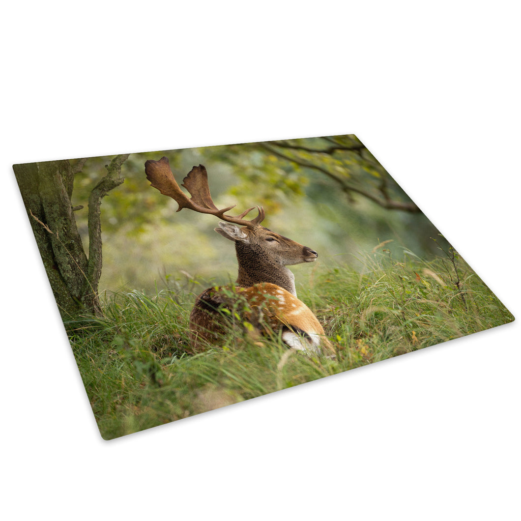 Stag Deer Forest Grass Glass Chopping Board Kitchen Worktop Saver Protector - A496-Animal Chopping Board-WhatsOnYourWall