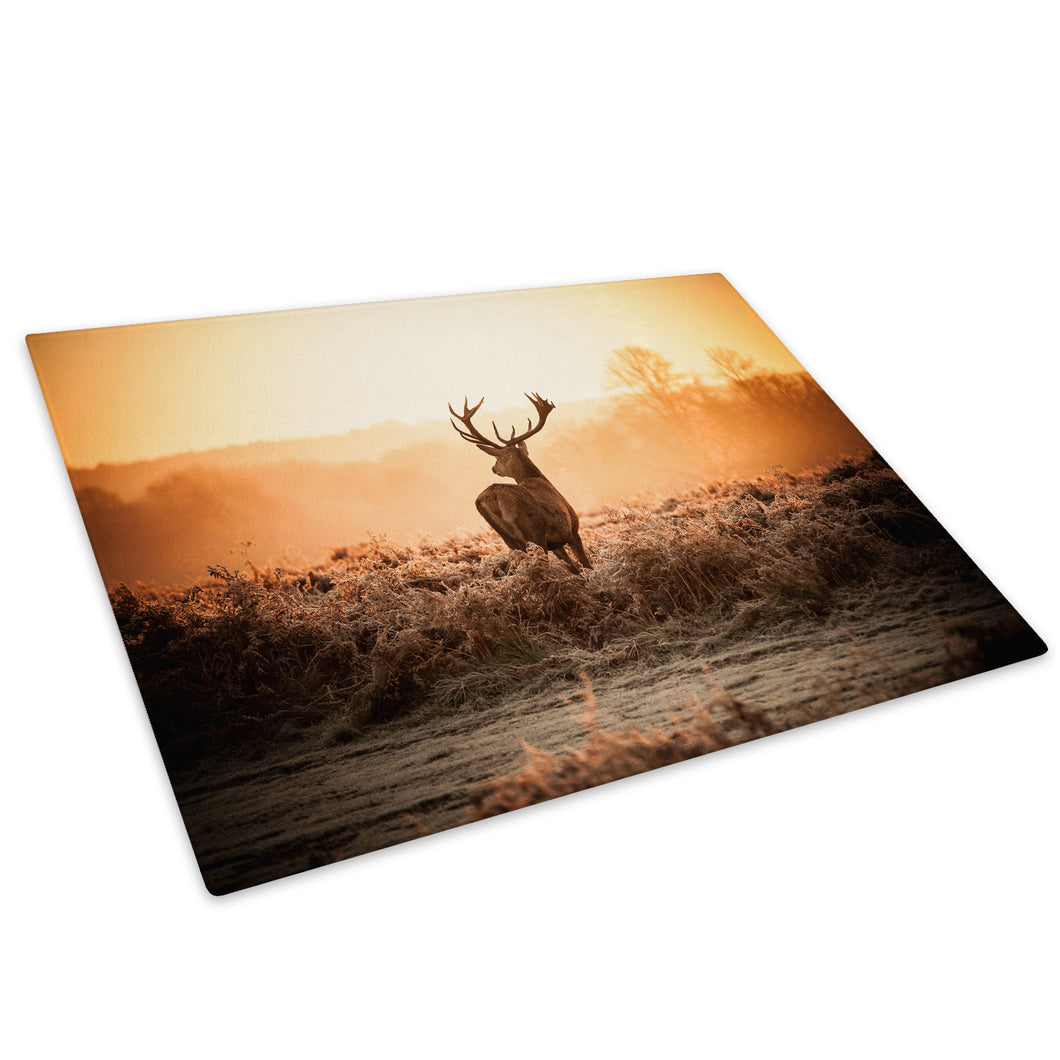 Brown Stag Sunrise Forest Glass Chopping Board Kitchen Worktop Saver Protector - A500-Animal Chopping Board-WhatsOnYourWall