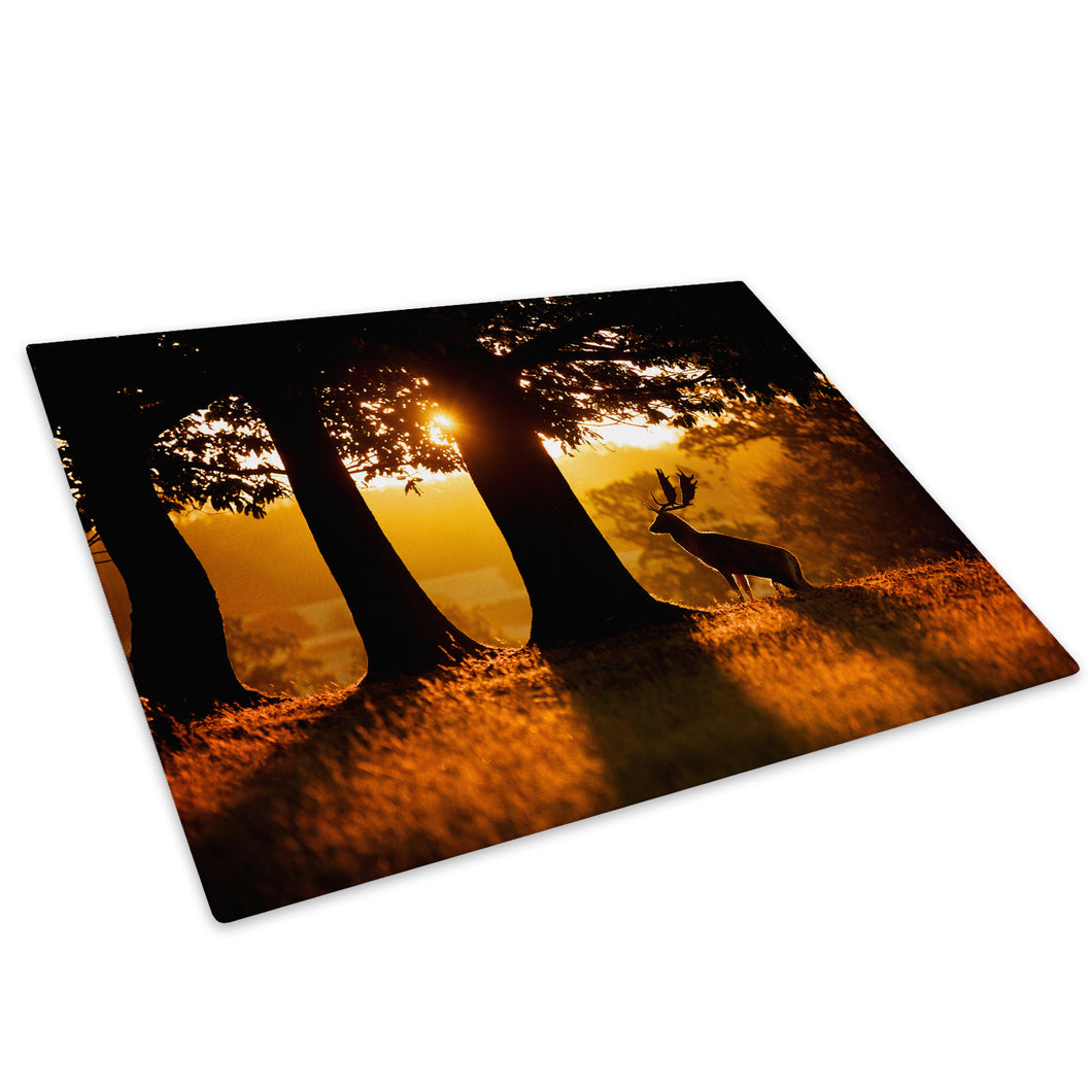Sunset Forest Silhouette Glass Chopping Board Kitchen Worktop Saver Protector - A504-Animal Chopping Board-WhatsOnYourWall