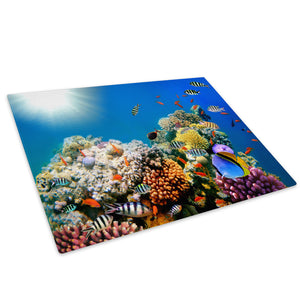 Ocean Coral Reef Fish Glass Chopping Board Kitchen Worktop Saver Protector - A536-Animal Chopping Board-WhatsOnYourWall