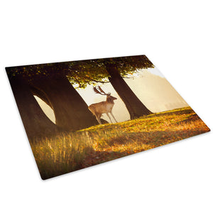 Golden Sunrise Forest Stag Glass Chopping Board Kitchen Worktop Saver Protector - A541-Animal Chopping Board-WhatsOnYourWall
