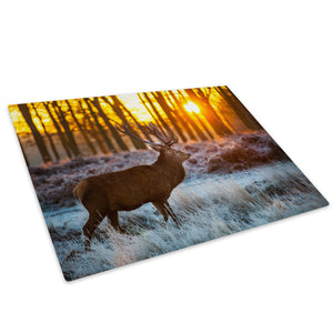 Sunset Forest Stag Snow Glass Chopping Board Kitchen Worktop Saver Protector - A546