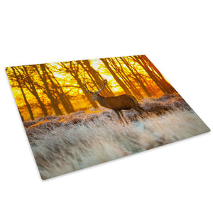 Yellow Sunset Stag Forest Glass Chopping Board Kitchen Worktop Saver Protector - A554-Animal Chopping Board-WhatsOnYourWall