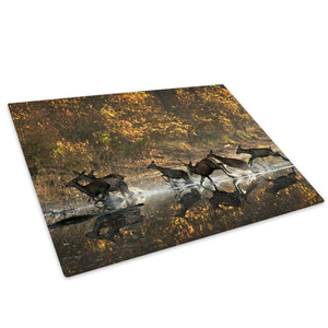Herd Deer Gallop Forest Glass Chopping Board Kitchen Worktop Saver Protector - A562-Animal Chopping Board-WhatsOnYourWall