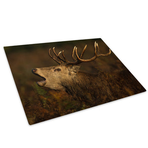 Brown Stag Green Brown Glass Chopping Board Kitchen Worktop Saver Protector - A570-Animal Chopping Board-WhatsOnYourWall