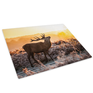 Yellow Sunset Stag Orange Glass Chopping Board Kitchen Worktop Saver Protector - A575-Animal Chopping Board-WhatsOnYourWall