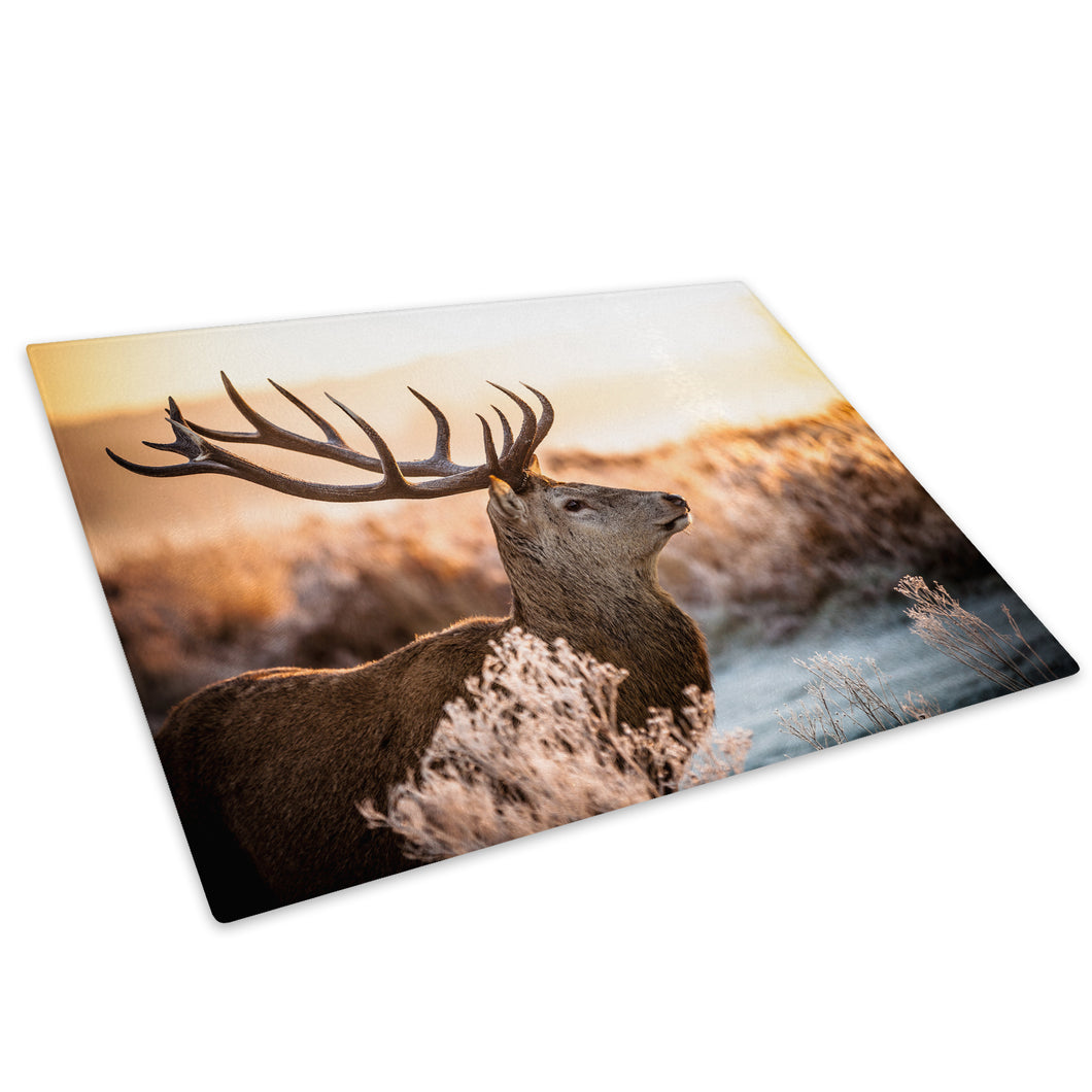 Stag Sunset Green Brown Glass Chopping Board Kitchen Worktop Saver Protector - A576-Animal Chopping Board-WhatsOnYourWall