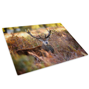 Brown Stag Deer Green Glass Chopping Board Kitchen Worktop Saver Protector - A618-Animal Chopping Board-WhatsOnYourWall