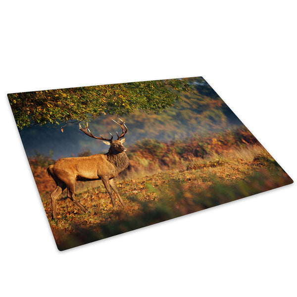 Forest Sunrise Brown Stag Glass Chopping Board Kitchen Worktop Saver Protector - A627-Animal Chopping Board-WhatsOnYourWall