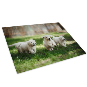 White Labrador Puppy Green Glass Chopping Board Kitchen Worktop Saver Protector - A712-Animal Chopping Board-WhatsOnYourWall