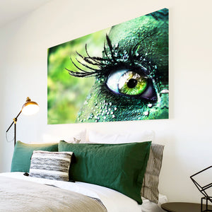 AB007 Framed Canvas Print Colourful Modern Abstract Wall Art -  Green Eye Feather