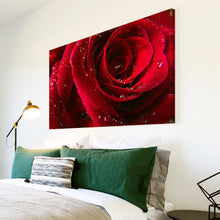 AB074 Framed Canvas Print Colourful Modern Abstract Wall Art - Red Rose Rain Drops-Canvas Print-WhatsOnYourWall