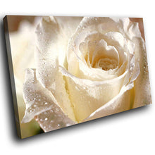 AB075 Framed Canvas Print Colourful Modern Abstract Wall Art - White Rose Rain Drops-Canvas Print-WhatsOnYourWall