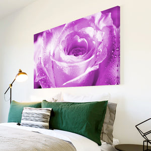 AB078 Framed Canvas Print Colourful Modern Abstract Wall Art -  Purple Rose Raindrops