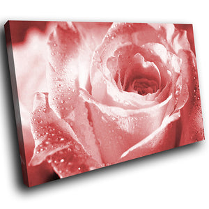 AB079 Framed Canvas Print Colourful Modern Abstract Wall Art - Pink Rose Rain Drops-Canvas Print-WhatsOnYourWall