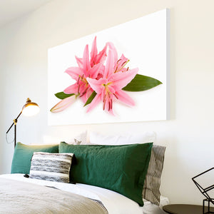 AB111 Framed Canvas Print Colourful Modern Abstract Wall Art - Pink White Lily Flower-Canvas Print-WhatsOnYourWall