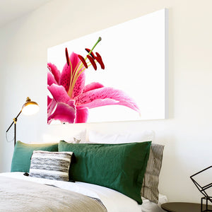 AB119 Framed Canvas Print Colourful Modern Abstract Wall Art - Pink White Lily Flower-Canvas Print-WhatsOnYourWall