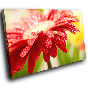 AB128 Framed Canvas Print Colourful Modern Abstract Wall Art - Red Flower Rain Drops-Canvas Print-WhatsOnYourWall