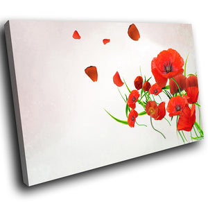 AB222 Framed Canvas Print Colourful Modern Abstract Wall Art - Red Poppy Flower Cool-Canvas Print-WhatsOnYourWall