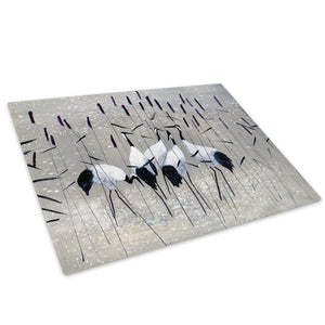 Black White Grey Bird Glass Chopping Board Kitchen Worktop Saver Protector - AB573-Abstract Chopping Board-WhatsOnYourWall