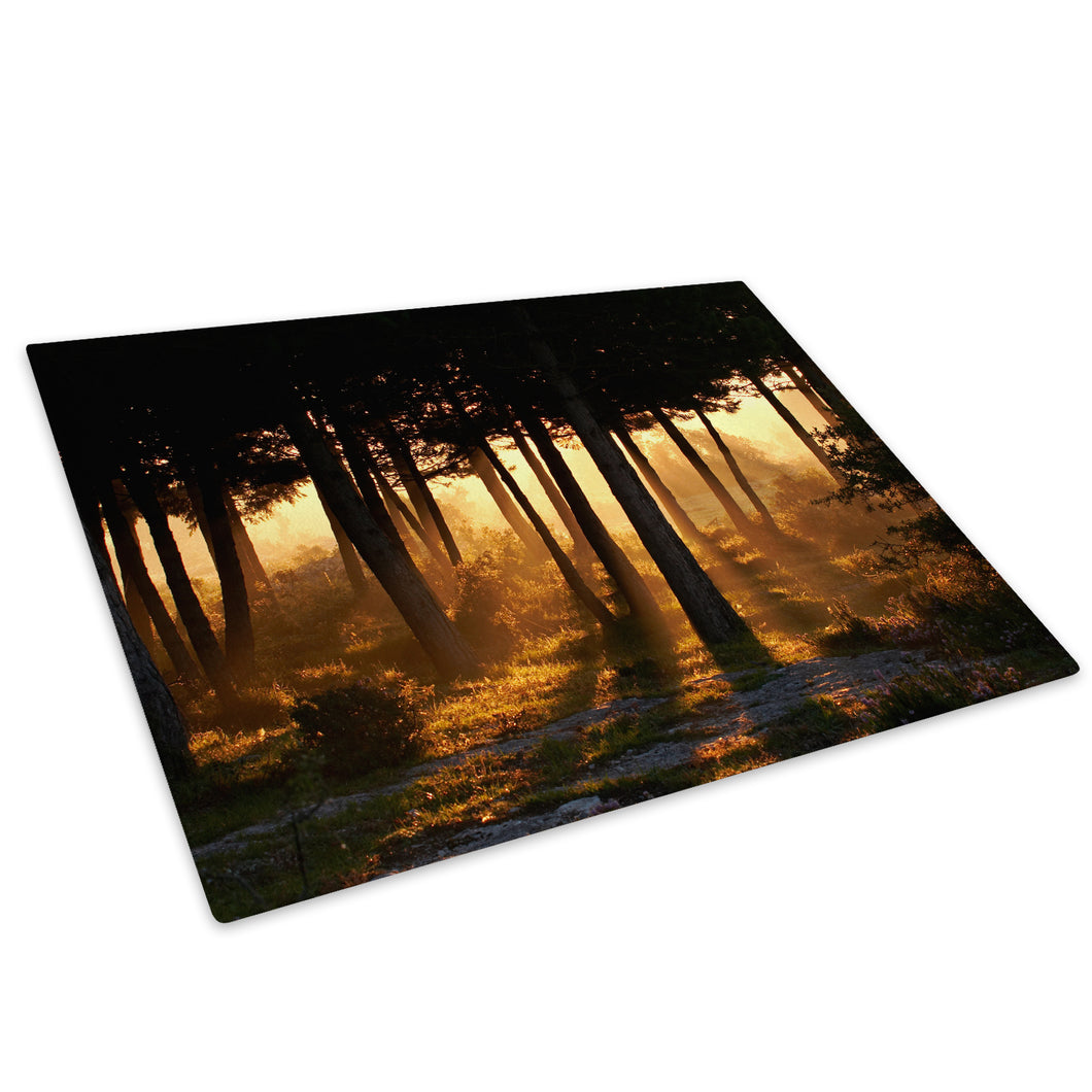 Orange Forest Sunrise Glass Chopping Board Kitchen Worktop Saver Protector - C010-Scenic Chopping Board-WhatsOnYourWall
