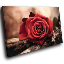 SC118 Framed Canvas Print Colourful Modern Scenic Wall Art - Red Rose Brown Yellow Nature-Canvas Print-WhatsOnYourWall