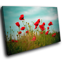 SC124 Framed Canvas Print Colourful Modern Scenic Wall Art - Red Poppy Flower Green Blue-Canvas Print-WhatsOnYourWall