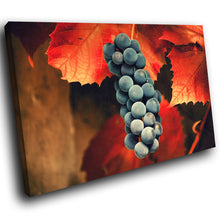 SC125 Framed Canvas Print Colourful Modern Scenic Wall Art - Orange Red Black Fruit Leaf-Canvas Print-WhatsOnYourWall