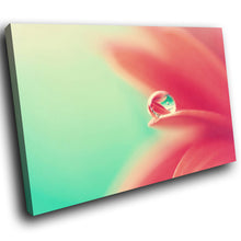 SC130 Framed Canvas Print Colourful Modern Scenic Wall Art - Pink Green Lily Flower Raindrop-Canvas Print-WhatsOnYourWall