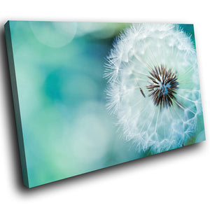 SC191 Framed Canvas Print Colourful Modern Scenic Wall Art - White Green Dandelion Flower-Canvas Print-WhatsOnYourWall