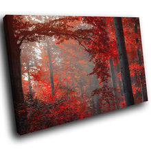 SC259 Framed Canvas Print Colourful Modern Scenic Wall Art - Red Black Grey Forest Cool-Canvas Print-WhatsOnYourWall