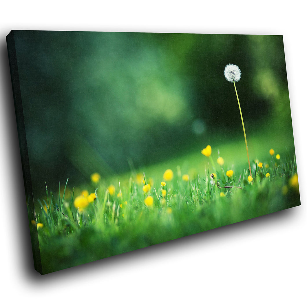 SC262 Framed Canvas Print Colourful Modern Scenic Wall Art - Green Black Flower Nature-Canvas Print-WhatsOnYourWall