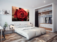 SC268 Framed Canvas Print Colourful Modern Scenic Wall Art - Retro Red Rose Vintage Cool-Canvas Print-WhatsOnYourWall