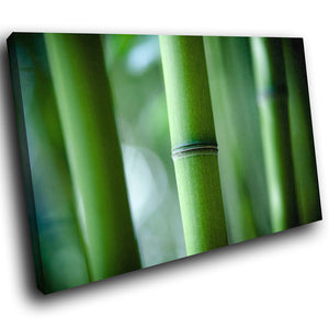 SC279 Framed Canvas Print Colourful Modern Scenic Wall Art - Green Bamboo Forest Nature-Canvas Print-WhatsOnYourWall