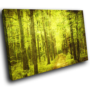 SC288 Framed Canvas Print Colourful Modern Scenic Wall Art - Retro Green Brown Forest Cool-Canvas Print-WhatsOnYourWall