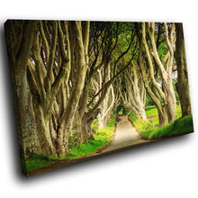 SC837 Framed Canvas Print Colourful Modern Scenic Wall Art - Green Dark Hedges Ireland