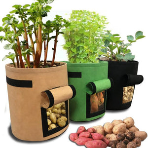 Grow Bags with Window for Root Access - 3 Sizes